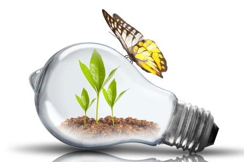 umweltschonende ledbeleuchtung